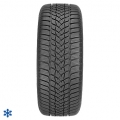 Goodyear 205/60R16 92H UltraGrip Performance 2 MS FP